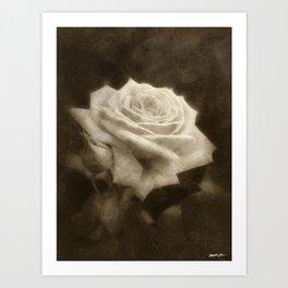 Pink Roses in Anzures 3 Antiqued Art Print