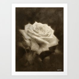 Pink Roses in Anzures 3 Antiqued Art Print