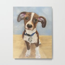 Cute Terrier Mix Metal Print
