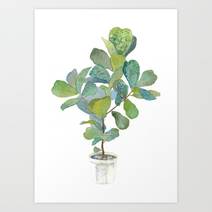 fiddle leaf fig tree art print - Fiddle Leaf Fig Tree