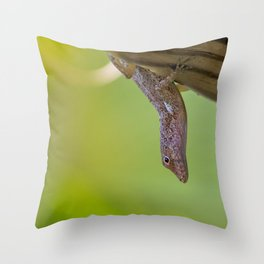 Puerto Rican Lizard Throw Pillow