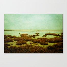 wadden sea Canvas Print