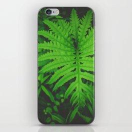 Nearby Jungle iPhone Skin