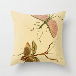 Naturalist Stick Bugs Throw Pillow