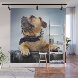 Super Pets Series 1 - Super Oaks 3 Wall Mural