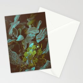 look into nature for signs. Stationery Cards