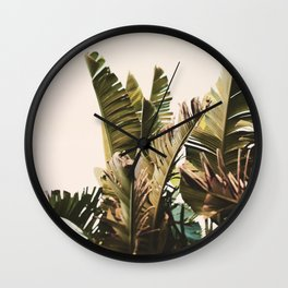 Equatorial Wall Clock