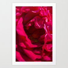 passion. Art Print