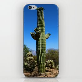 Saguaro iPhone Skin