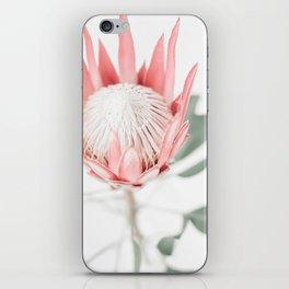 King Protea III iPhone Skin