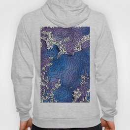 The Arctic North Hoody