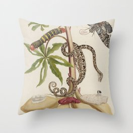 Cassava - 1765 Maria Sibylla Merian Throw Pillow