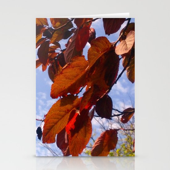 Autumn is in the Air Stationery Cards