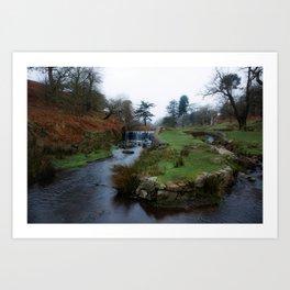 Stream in the park Art Print