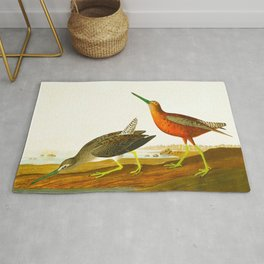 Red-breasted Snipe Bird Rug