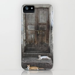 Cats at the Door iPhone Case