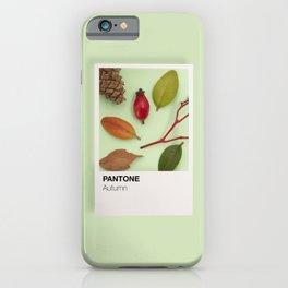 Autumn tones iPhone Case