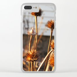 Coneflowers in the Light Clear iPhone Case