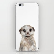 Little Meerkat iPhone & iPod Skin