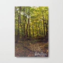 The Grove Metal Print
