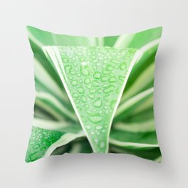 Green leaf photography Morning dew III Throw Pillow