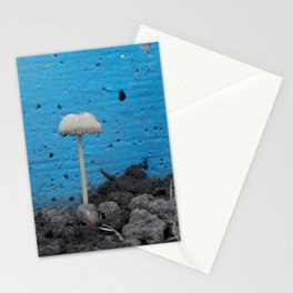 Urban Mushroom Stationery Cards
