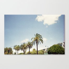 Palm Street Canvas Print