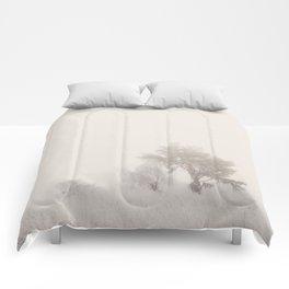 the magic of winter ...  Comforters