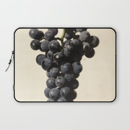 Vintage Concord Grapes Illustration Laptop Sleeve