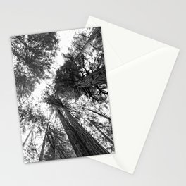 Muir Woods - California Stationery Cards