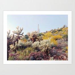 Arizona Color Art Print