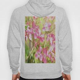 Pink Dogwood Flowering Tree In Spring Time Hoody