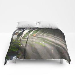 Photosynthesis Comforters