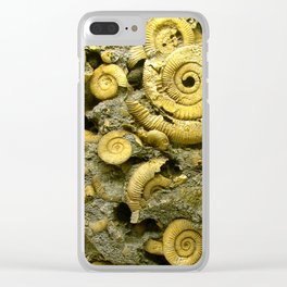 Fossils - Ammonite - Coiled Cephalopods  Clear iPhone Case