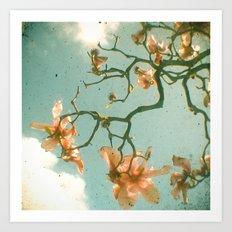 Sweet Magnolia Art Print