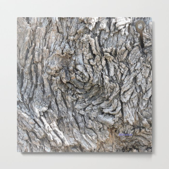 TEXTURES -- Blue Elderberry Bark Metal Print