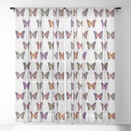 Butterflies Variation 05 Sheer Curtain