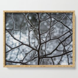 Snowy Branches Serving Tray