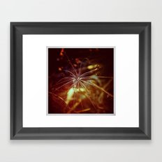 Autumnal#4 Framed Art Print