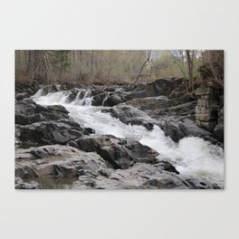 Willoughby Falls in the Spring Canvas Print