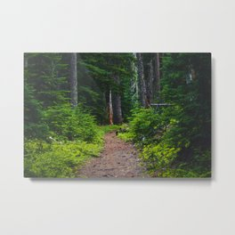 Green Forest Path (Color) Metal Print