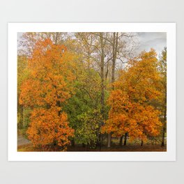 Leaning Into Autumn Art Print