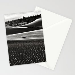 Walking alone through the desert of life Stationery Cards