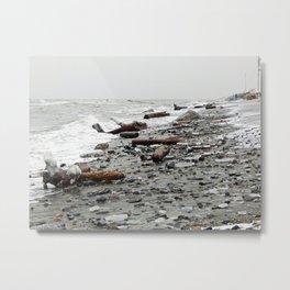 Driftwood Beach after the Storm Metal Print