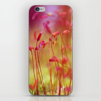 moss iPhone & iPod Skins featuring Moss by LoRo  Art & Pictures