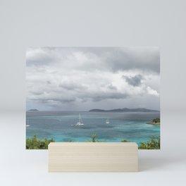 St John - What's Not to Love Mini Art Print