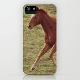 Feeding Time, Hurry On Up iPhone Case
