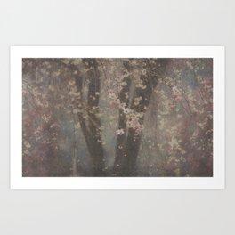 Flores de cereza Art Print