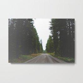 Lake Cushman Roads Metal Print