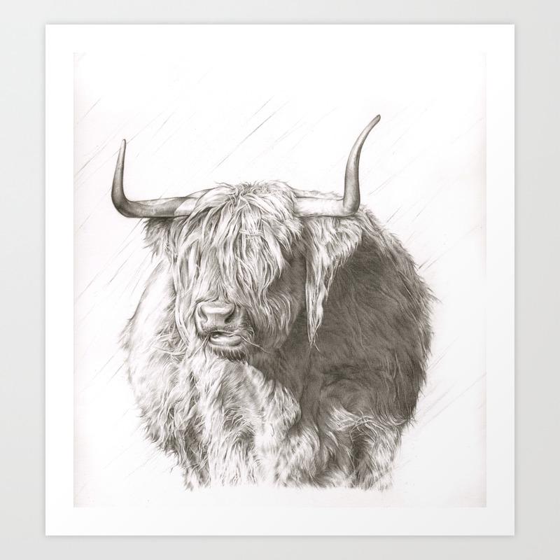 highland cow sketch Art Print